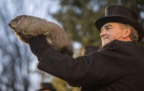 La marmota Phil predice seis semanas más de invierno en EEUU