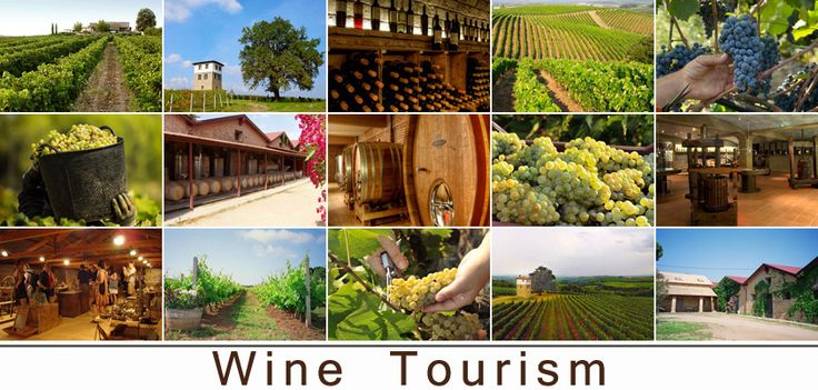 Wine tourism in Greece