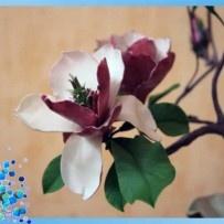 Magnolia polymer clay flowers tutorial  МК по цветам магнолии из пластики