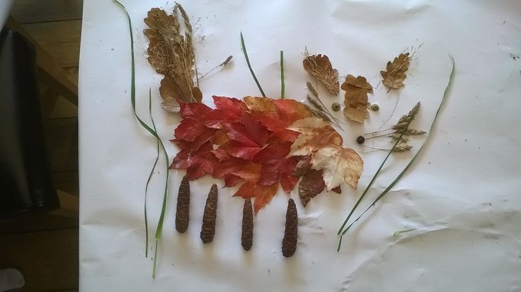 Mya, aged 6, won our Nature Art competition! Kerry Conway said that the attention to detail was brilliant and she loved that the fox has real character! http://wildlifewatch.org.uk/nature-art-competition