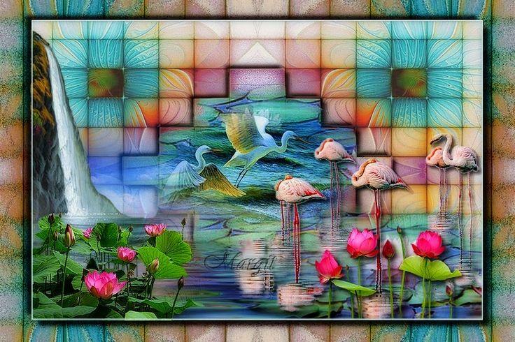 Állatos képeslapok - 108629493464225213968 - Picasa Webalbumok