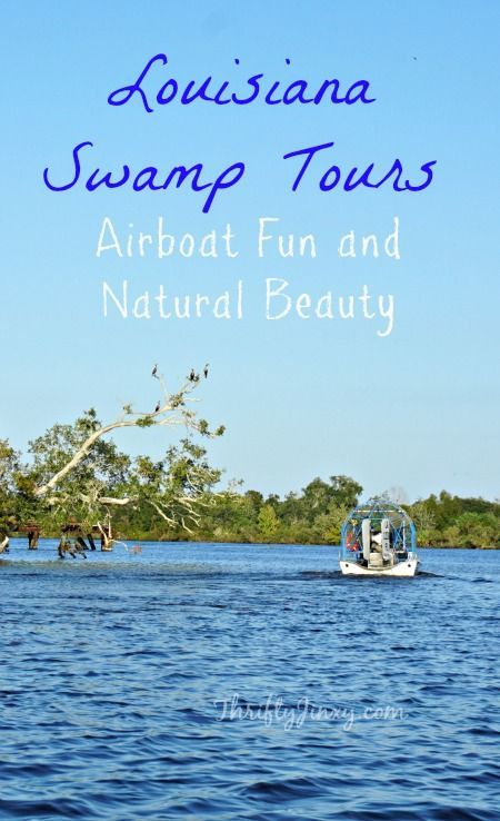 Louisiana Swamp Tours: The best way to take on Louisiana swamp tours is in an airboat! The New Orleans Airboat tour offers a close look at the beauty of nature AND high speed fun.