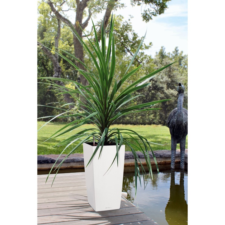 Square Lechuza Cubico Self-Watering Resin Planter - Indoor Planters at Simply Planters