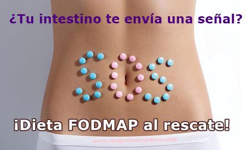 Si tienes malestar digestivo, el protocolo FODMAP te ayuda a identificar los causantes