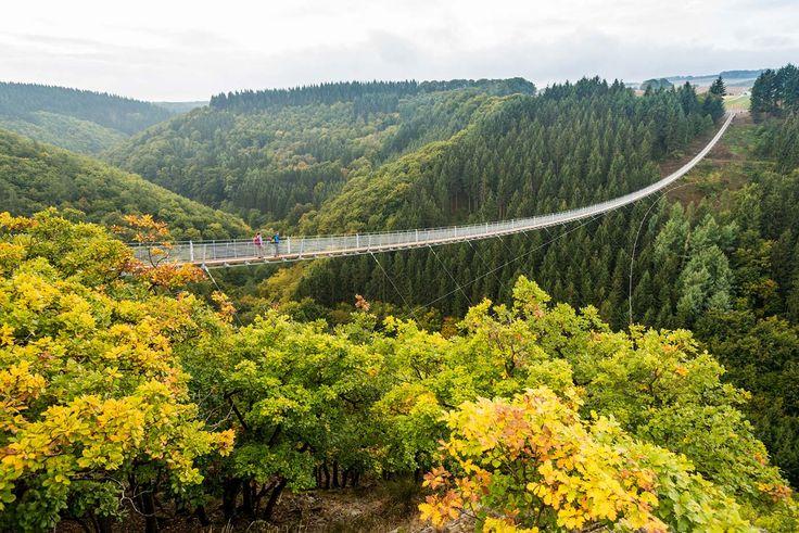 Einzigartig in der Bundesrepublik und ein Adrenalin-Garant - die Geierley-Hängebrücke in Mörsdorf im Hunsrück.