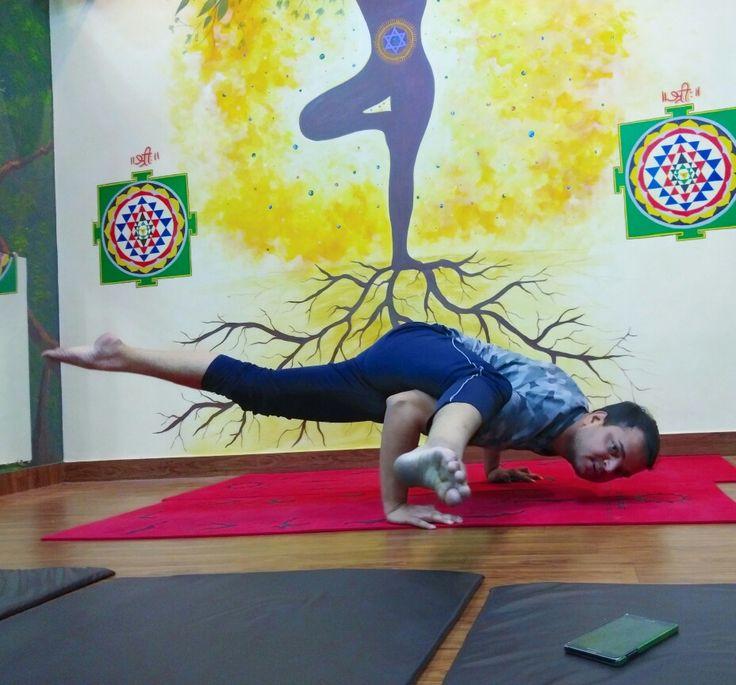 Best yoga classes in kanpur sadhak anshit yoga classes