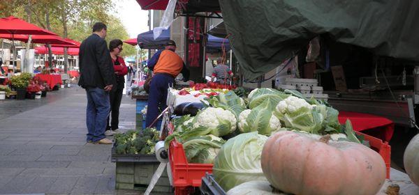 geelong-farmers-market