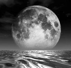 Para información sobre la Plata Coloidal Monoatómicapodéis llamar al 685 033 451 Javier oescribir a serluzyamor@gmail.com Plata Coloidal Monoatómica: Agua Lunar El mayor antibacteriano, antivíric…