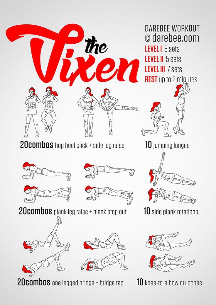 Vixen Workout                                                       …