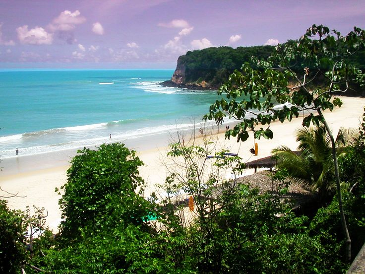 Praia dos Golfinhos. Pipa. Brasil. (02/2011)