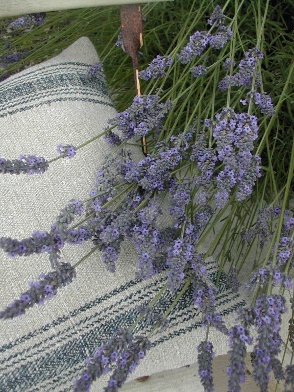 Pillow - made of 19th century German hemp grain sack.  La Pouyette....: Old Linen and Lavender