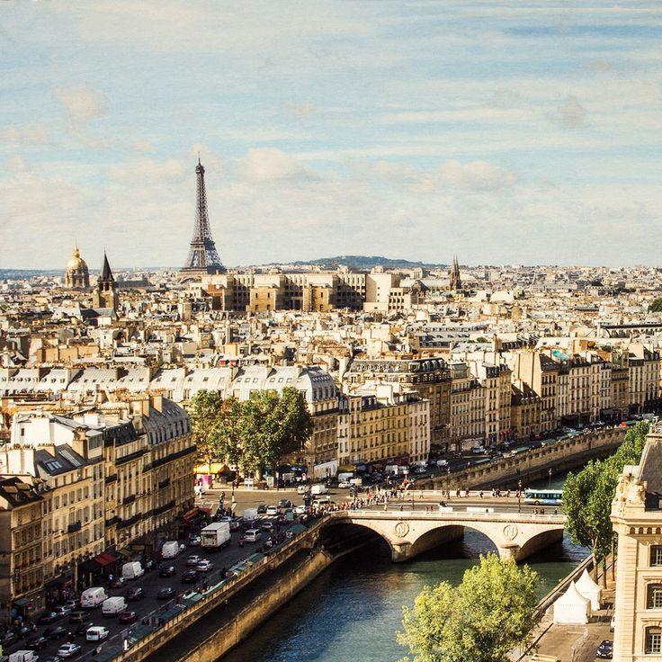 Paneel Tricot Paris 56282-300