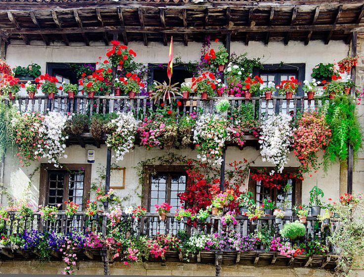Balcones floridos terrazas y balcones pinterest - Balcones y terrazas ...