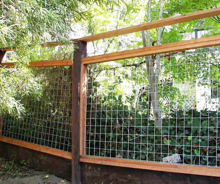 Hog Wire Fence Panel Google Search Garden Pinterest