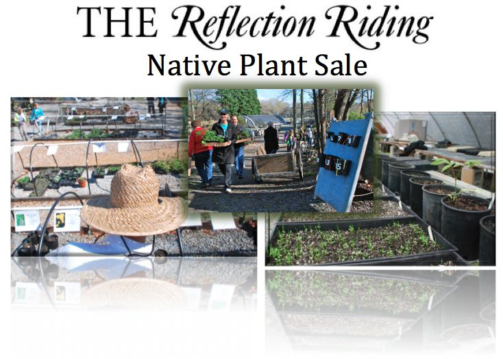 Nature Center Chattanooga Plant Sale