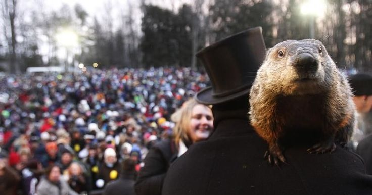 Groundhog Day Quiz: How Well Do You Know This February 2nd Tradition? An annual event that came from Europe, these animals help decide the weather for the very near future! #groundhogday #groundhog #quiz