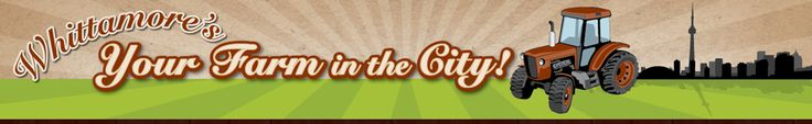 Whittamore's Farm: Your Farm in the City
