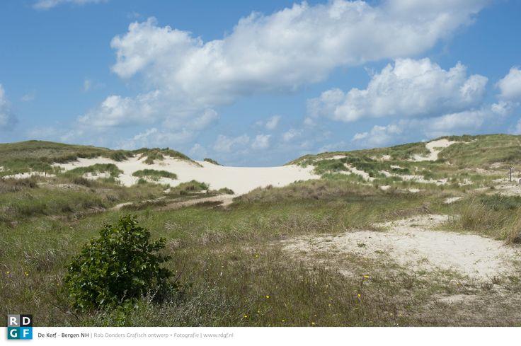 Picture: Rob Donders   Location: Schoorlse Duinen - The Netherlands - De Kerf   De Kerf ontstond in 1997 om zand, wind en water weer vrij spel te geven. Daarbij werd er een gat gegraven in de eerste duinenrij, zodat bij gunstige storm het zeewater in de achterliggende duinvallei kan stromen. Veel bijzondere planten (zoals zilt torkruid, strandbiet en gewortelde champignonzwam) en dieren (onder andere de bontbekplevier en de rugstreeppad) hebben zich in het gebied gevestigd.