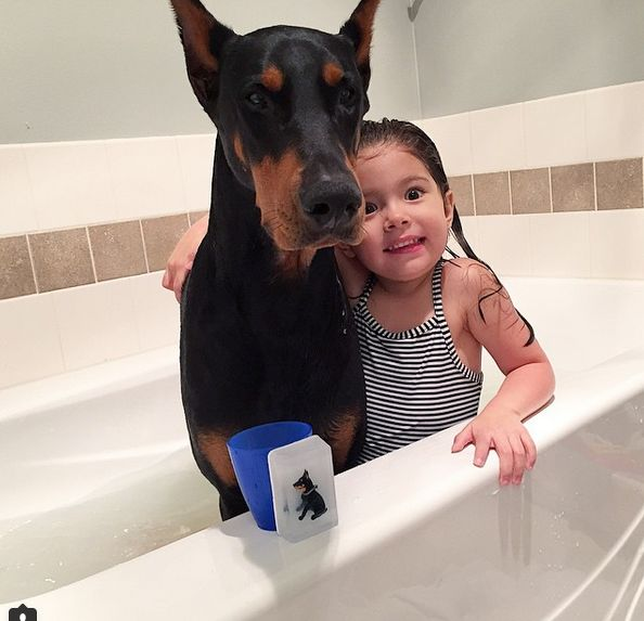 It is Adorable to see the Love between this Little Girl and Her Huge Dog - Viralomia