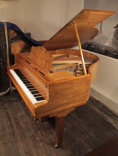A Bluthner Baby Grand Piano For Sale with a Walnut Case and Spade Legs at Besbrode Pianos. Piano has an eighty-eight note keyboard and two-pedal lyre £6000