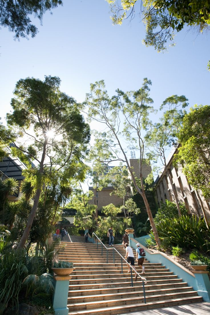 Stairs & trees, great parts of UNSW.