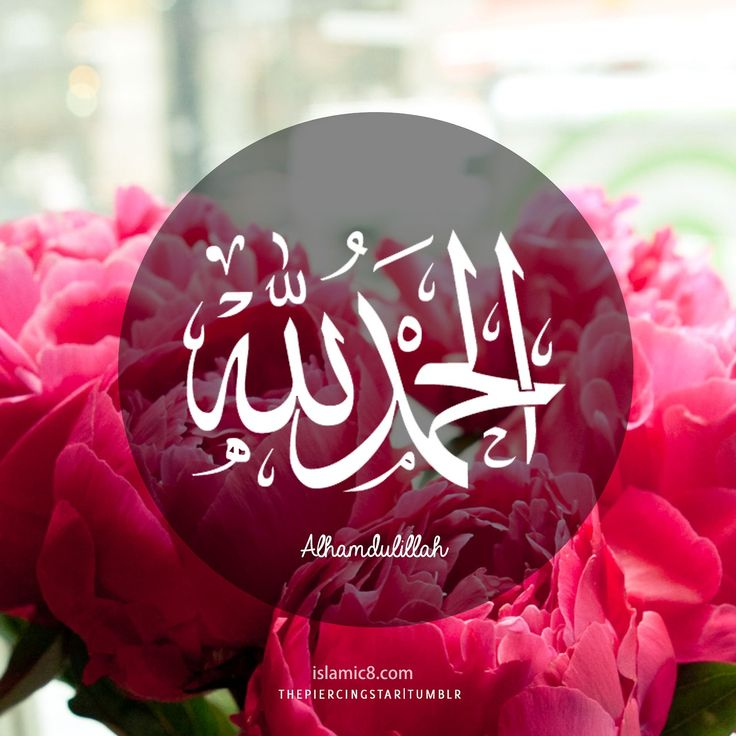 Alhamdulillah Calligraphy Desing with Pink Flowers | Islamic Art ...