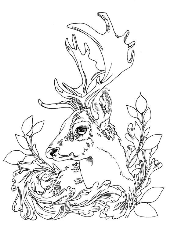 Adult Coloring Page Deer With Leaf Motif By JennRimbeyArt On Etsy