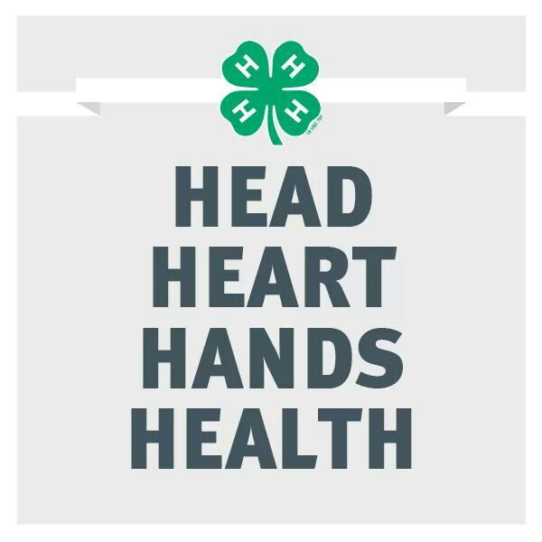 10+ images about 4-H way of life on Pinterest | Seasons, Pageants ...