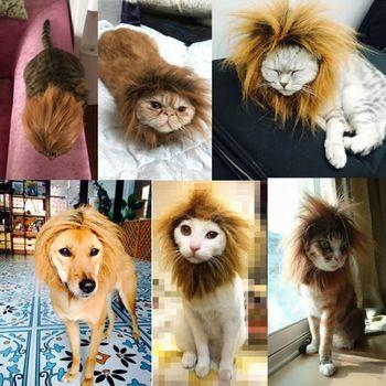 Fuentes del gato gato león Vig peluca accesorios sombrero lindo del gato accesorios para el cabello para gatos melena del león Pitcure accesorios de fotografía