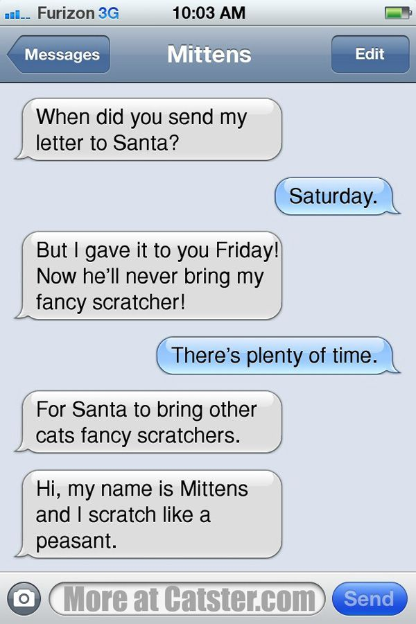 Texts From Mittens: The Letter to Santa Edition | Catster  Click image to read more!
