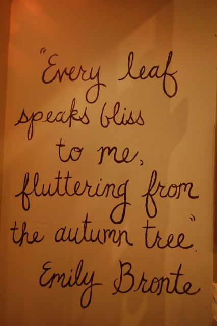 fallSpeak Bliss, Fall Leaves, Autumn Leaves, Autumn Fall, Quote, Emily Bronte, Favorite Seasons, Windows Display, Autumn Trees