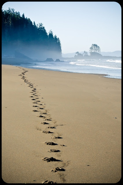 The West Coast Trail - the most beautiful piece of land I have ever seen.