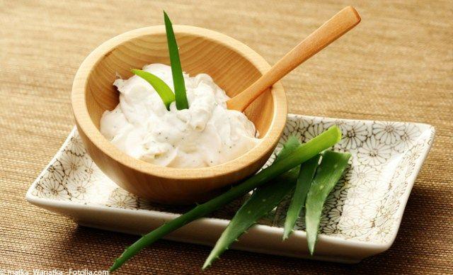 A la fois design et utile, l'Aloe Vera est une plante simple à entretenir et très utile. Découvrez les mille et une raisons d'avoir un Aloe Vera chez vous !