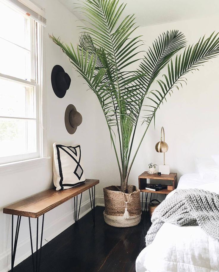 "768 Likes, 3 Comments - Interior | Home decor (@serie7es) on Instagram: ""#Bedroom inspiration via @lisadieder. DIY bench and nightstands. Loving the palm tree. Design by…"""