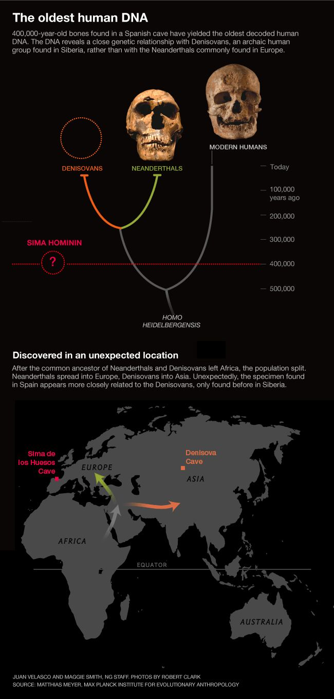 The oldest human DNA