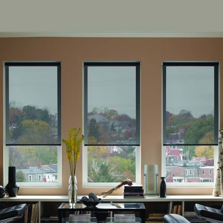American SheerWeave 10% Solar Shades from SelectBlinds.com