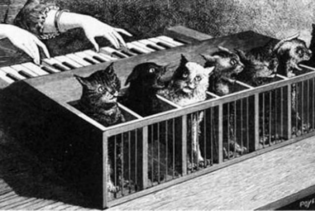 The Terrifying Katzenklavier: An Organ Made of Cats | Mental Floss