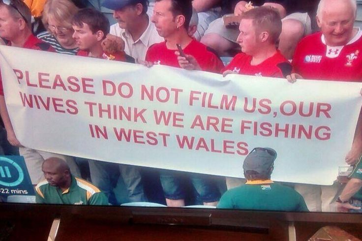 'Our wives think we're fishing in West Wales' Twitter laughs with the witty Welsh fans who smiled through South Africa defeat...look for the new banner in the next pin!