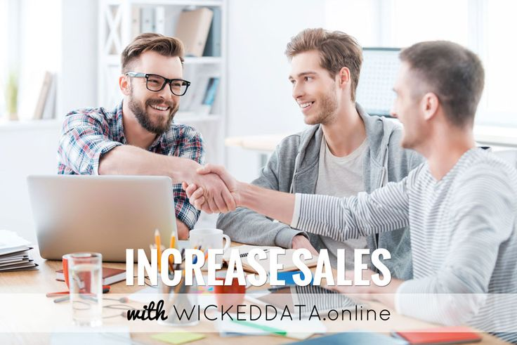 Increase Sales with Wickeddata.online