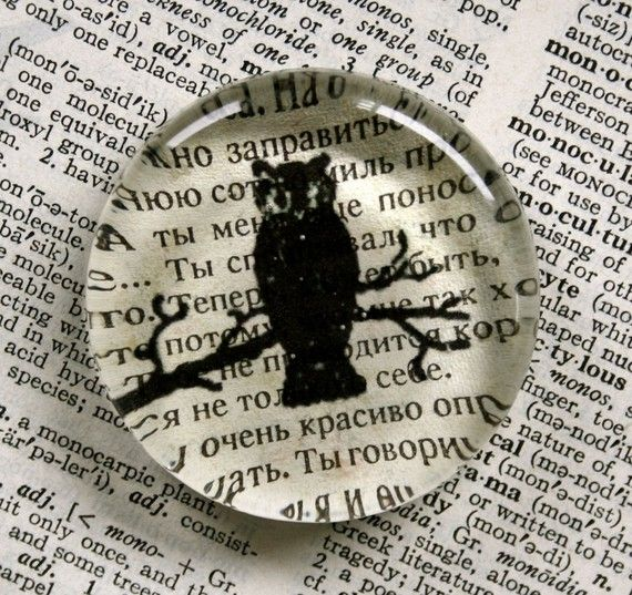 Owl Magnet - Jumbo Glass Magnet Owl on Russian Text on Etsy, $5.50