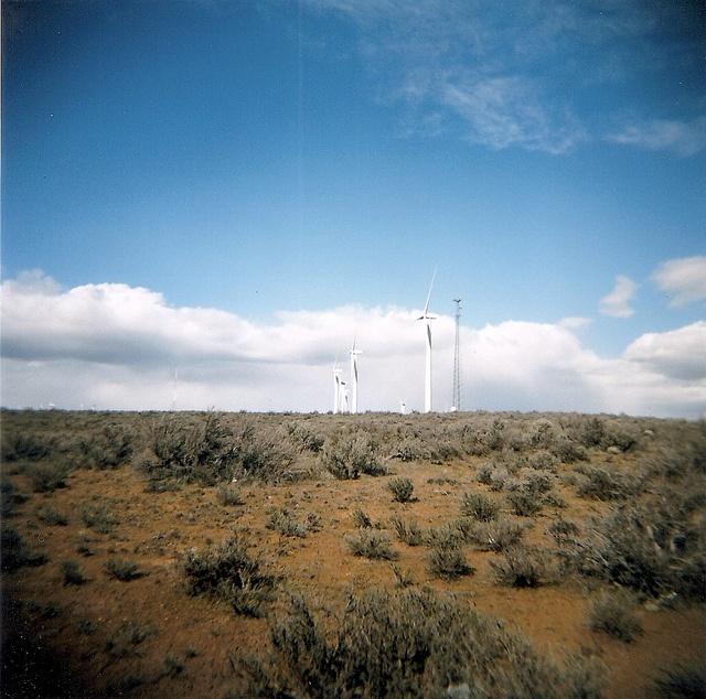 Columbia River Valley wind turbines. #Holga