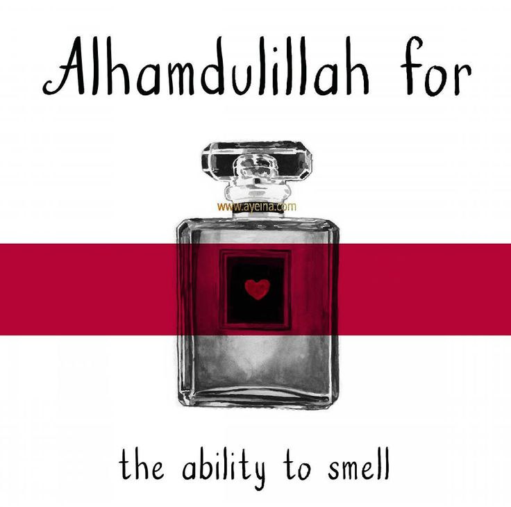 28. Alhamdulillah for the ability to smell. #AlhamdulillahForSeries