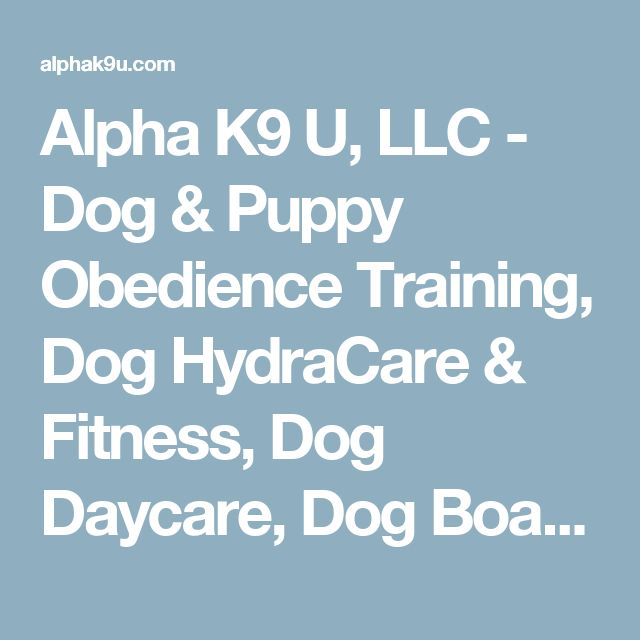 Alpha K9 U, LLC - Dog & Puppy Obedience Training, Dog HydraCare & Fitness, Dog Daycare, Dog Boarding, Dog Board & Train, Dog Grooming, Dog Sports, Precise Dog Food - About Us