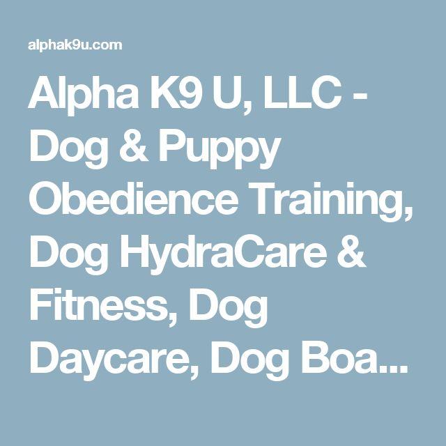 Alpha K9 U, LLC - Dog & Puppy Obedience Training, Dog HydraCare & Fitness, Dog Daycare, Dog Boarding, Dog Board & Train, Dog Grooming, Dog Sports, Precise Dog Food - About Us
