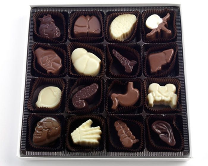 Chocolate Anatomy: Organs Never Tasted This Sweet