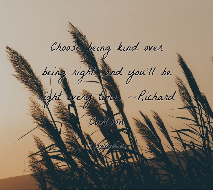 Quotes about Choose being kind over being right, and you'll be right every time. --Richard Carlson  with images background, share as cover photos, profile pictures on WhatsApp, Facebook and Instagram or HD wallpaper - Best quotes