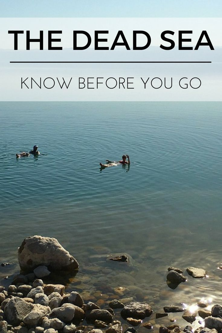 A detailed guide on what to expect visiting the Dead Sea & Accomodation choices on the Jordan east bank   Our Globetrotters