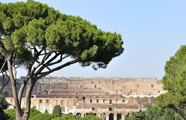 Colloseum | Flickr - Photo Sharing!