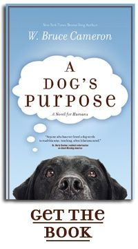 A Dogs Purpose - a great read!!!! Anyone who loves dogs will love this book.: Worth Reading, Book Worth, Dog Lovers, Dogs Purpose, Dogs Lovers, Favorite Book, Great Book, Bruce Cameron, Dogs Stories