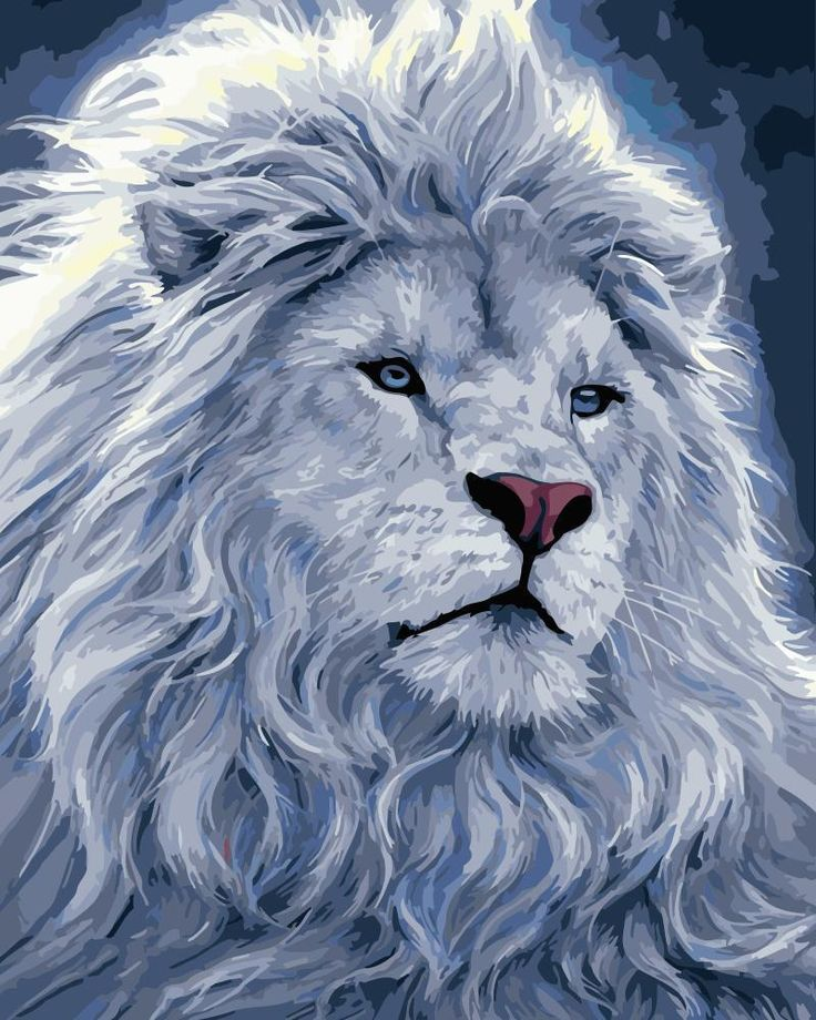 Lion Diy Paint By Numbers Kits WM1673 in 2020 Cross